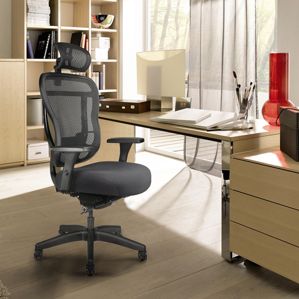 Rika ergonomic mesh-back chair for home office
